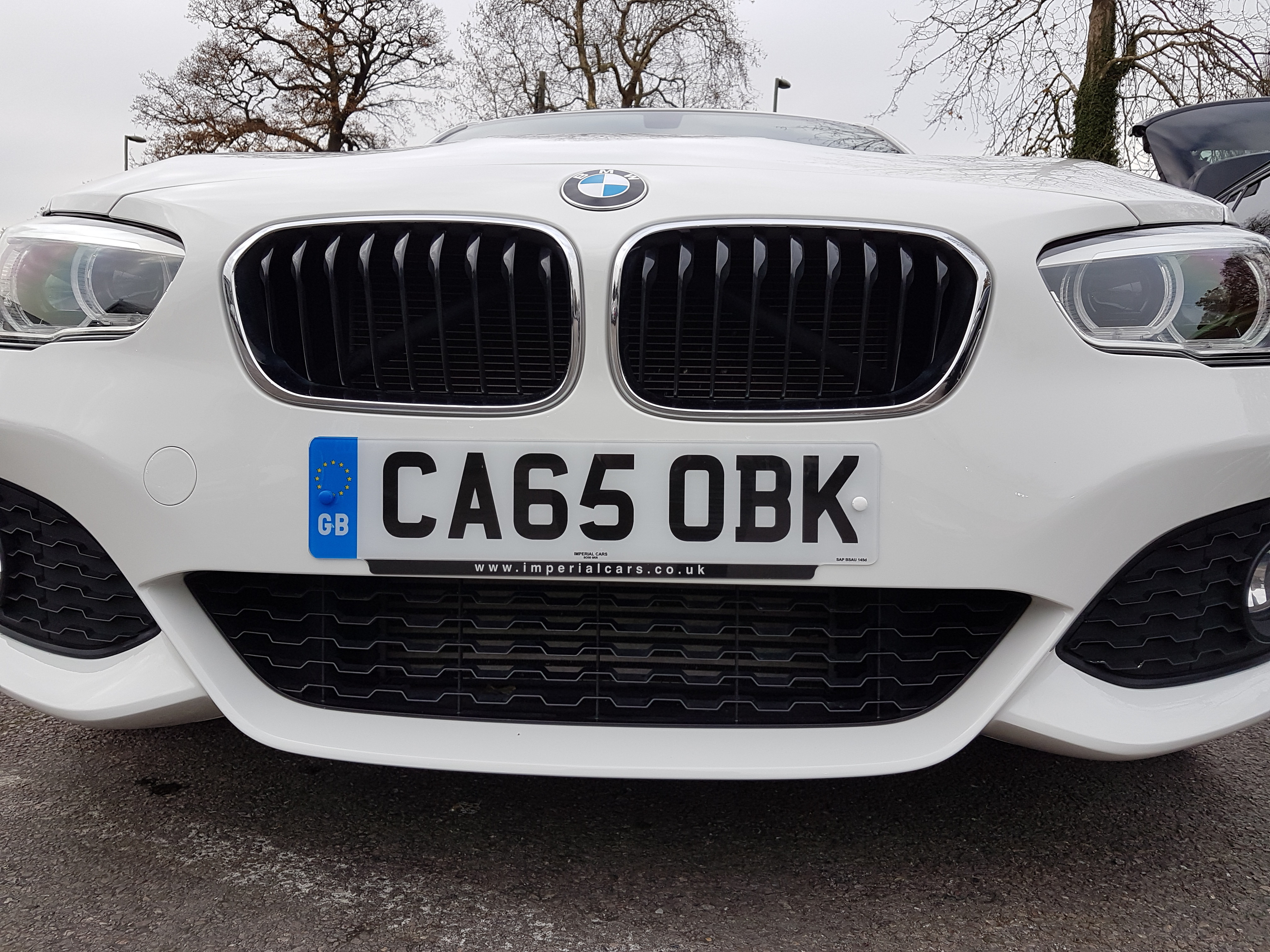 Used BMW 1 Series 116d Sport White Hatchback For Sale in
